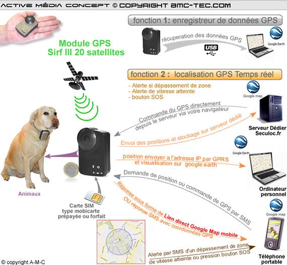 tr 10 a collier traceur gps temps reel et enregistreur de donn es pour animaux domestiques. Black Bedroom Furniture Sets. Home Design Ideas